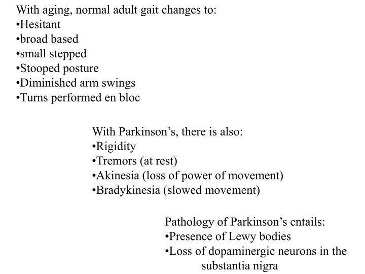 With aging, normal adult gait changes to: