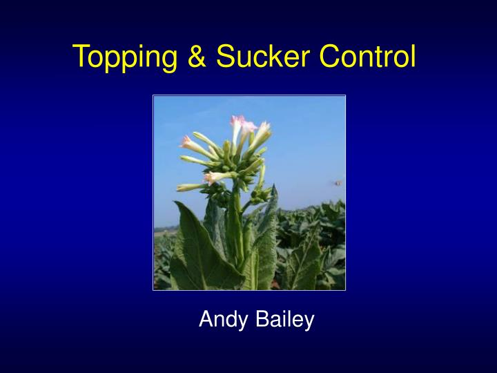 topping sucker control n.