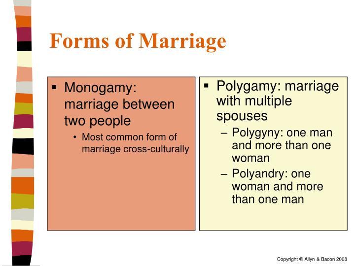 Monogamy: marriage between two people