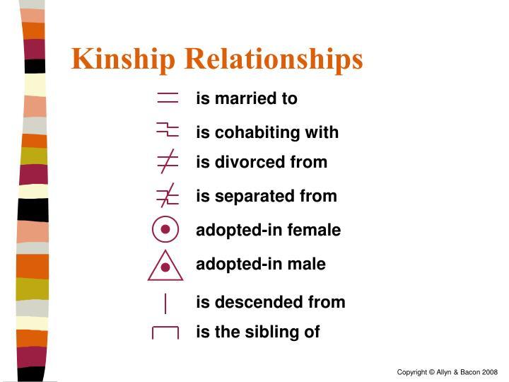 Kinship Relationships