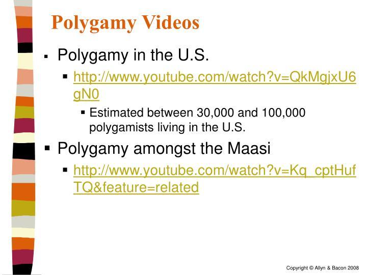 Polygamy Videos