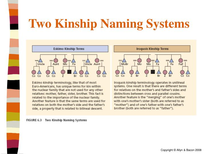 Two Kinship Naming Systems