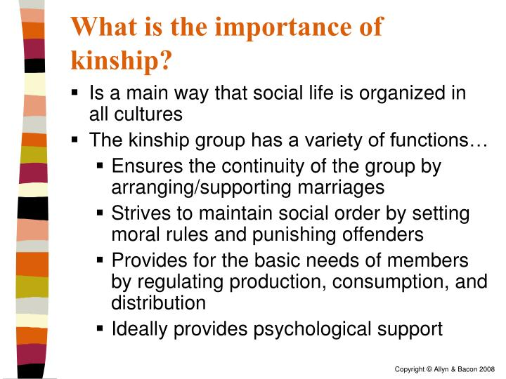 What is the importance of kinship?