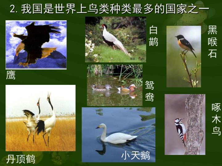 2.我国是世界上鸟类种类最多的国家之一