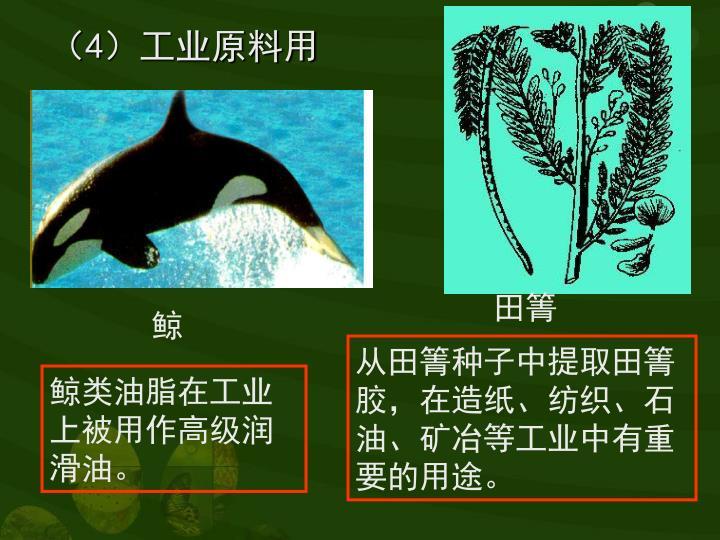 (4)工业原料用