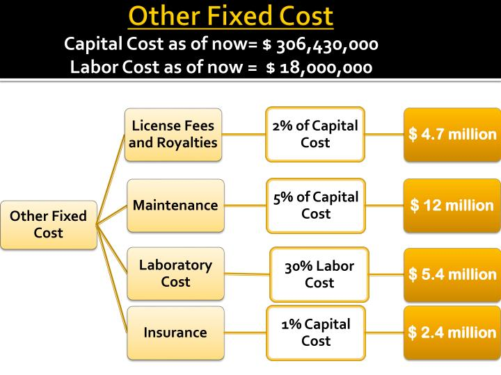 Other Fixed Cost
