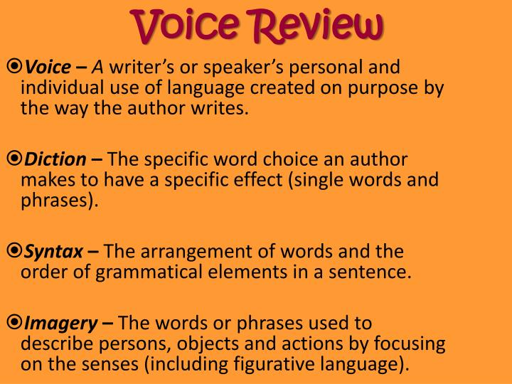 voice review n.