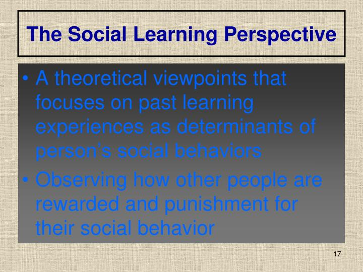The Social Learning Perspective