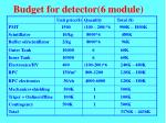 budget for detector 6 module