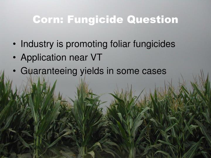 Corn: Fungicide Question