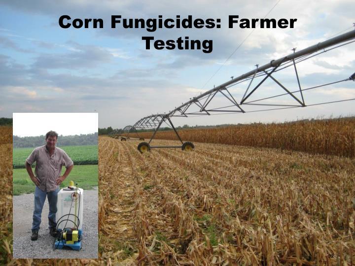 Corn Fungicides: Farmer Testing