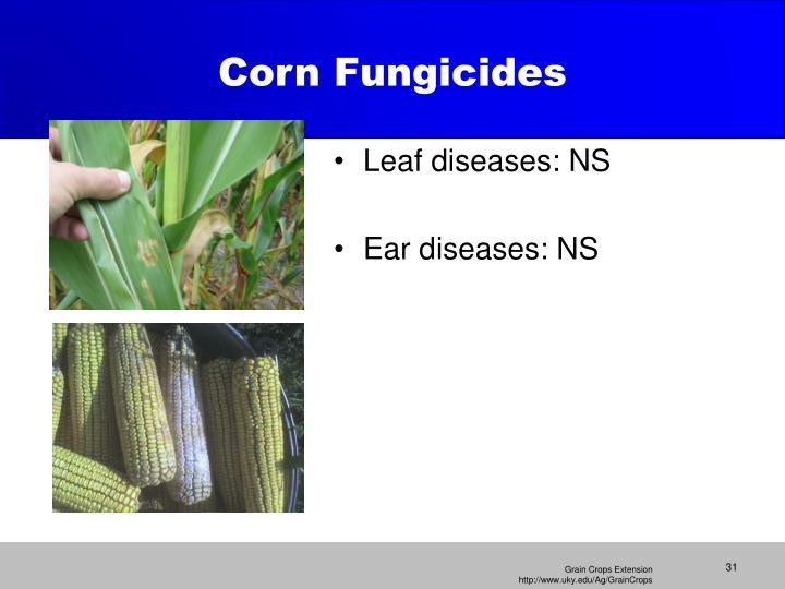 Corn Fungicides