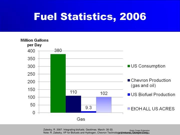 Fuel Statistics, 2006