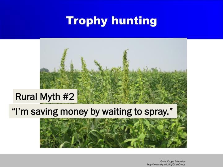 Trophy hunting