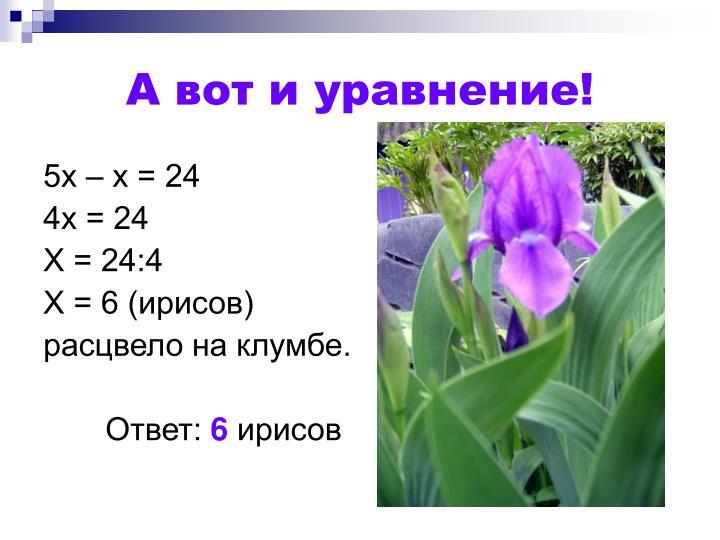 А вот и уравнение!