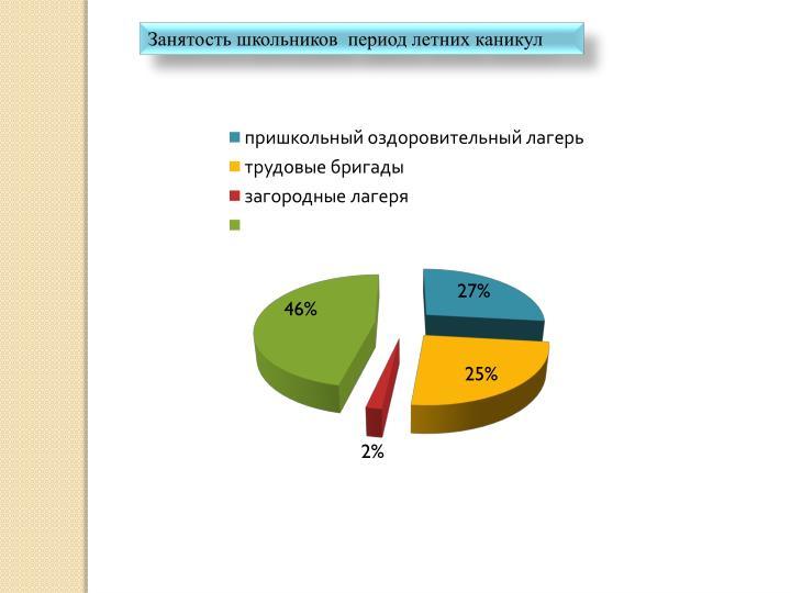 Занятость школьников  период летних каникул