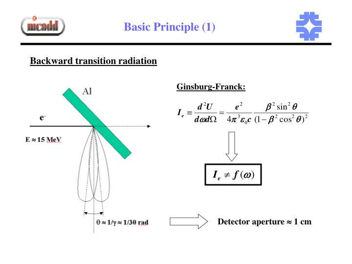 Basic Principle (1)