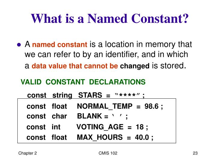 What is a Named Constant?