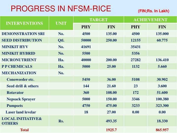 PROGRESS IN NFSM-RICE