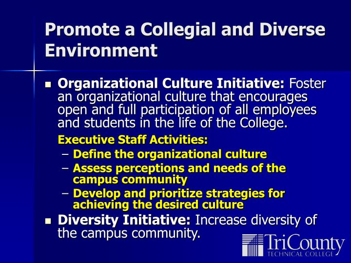 Promote a Collegial and Diverse Environment
