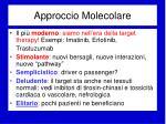 approccio molecolare