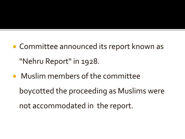 nehru report 1928