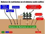 balance de nutrientes en el sistema suelo cultivo