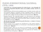 pleno jurisdiccional nacional civil 2008