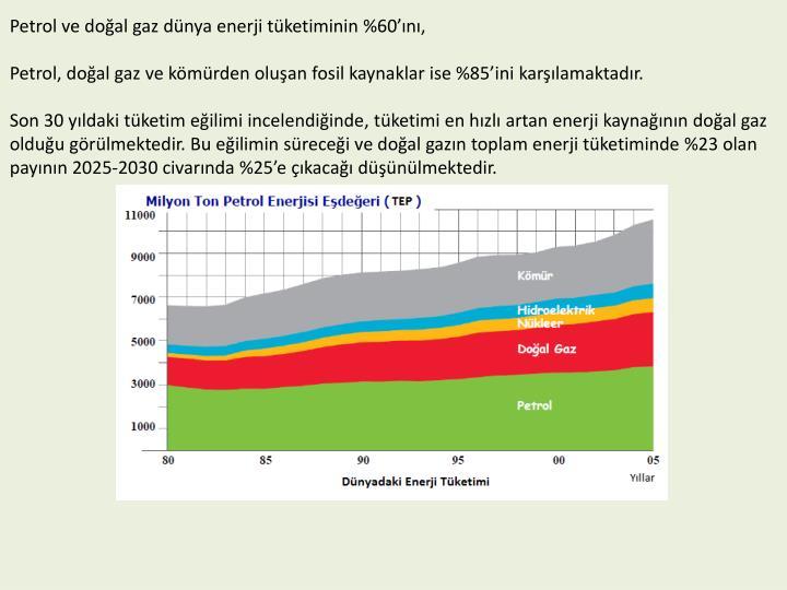 Petrol ve doğal gaz dünya enerji tüketiminin %60'ını,