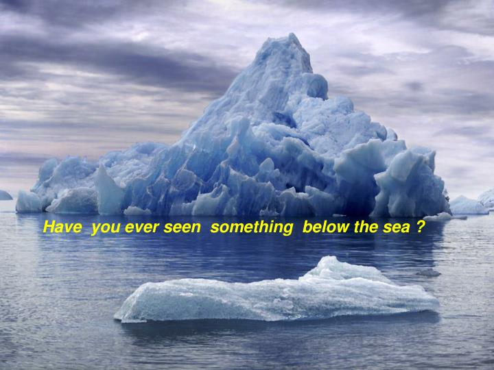 Have  you ever seen  something  below the sea ?