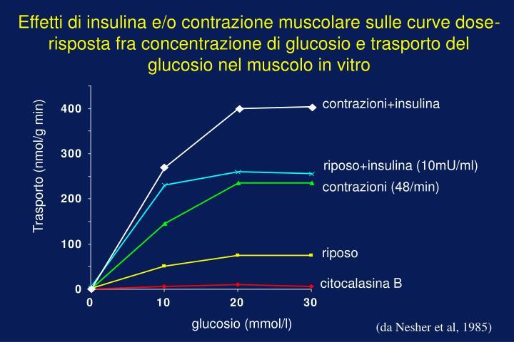 contrazioni+insulina