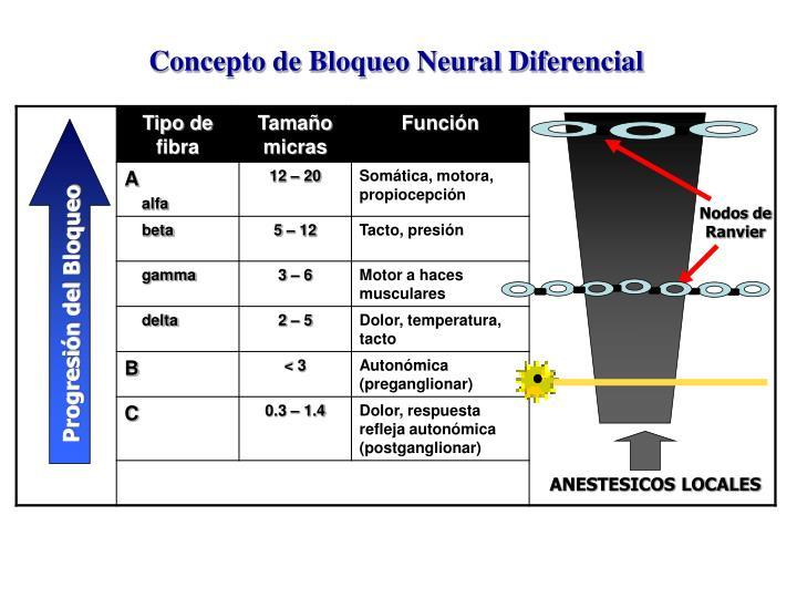 Concepto de Bloqueo Neural Diferencial
