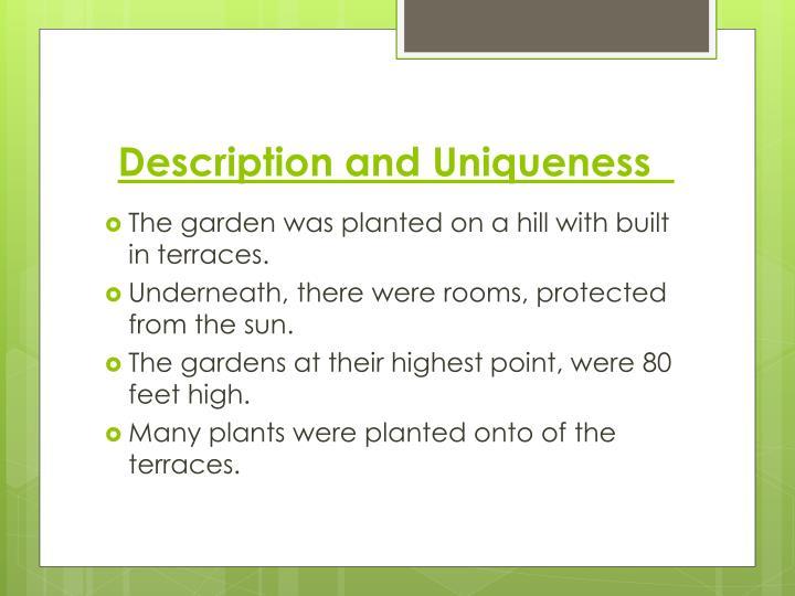 Description and Uniqueness