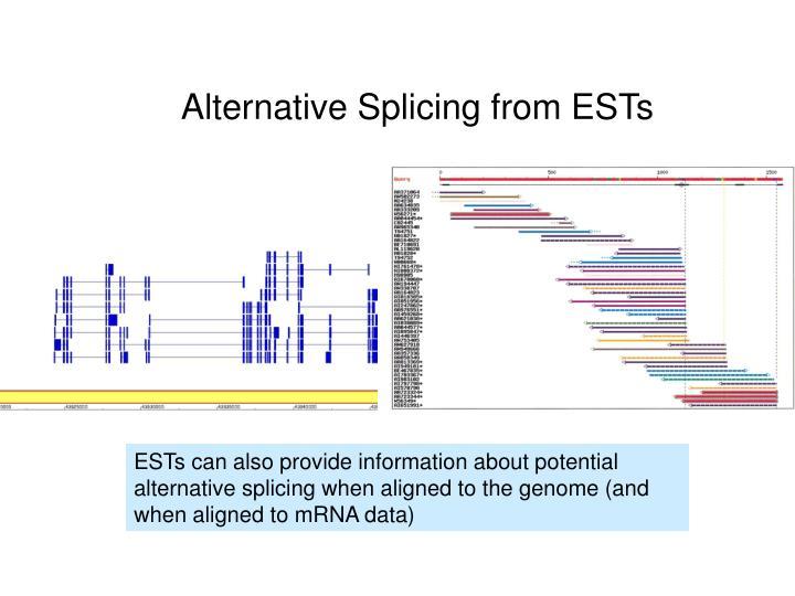 Alternative Splicing from ESTs