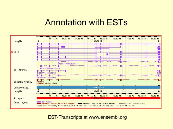 Annotation with ESTs