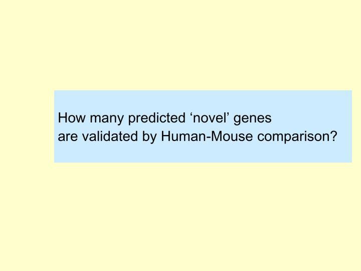 How many predicted 'novel' genes