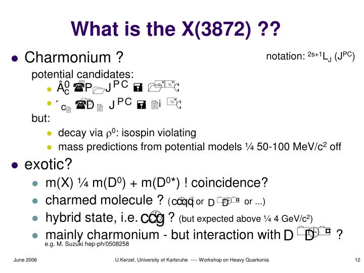 What is the X(3872) ??