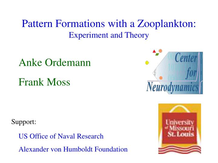 pattern formations with a zooplankton experiment and theory n.