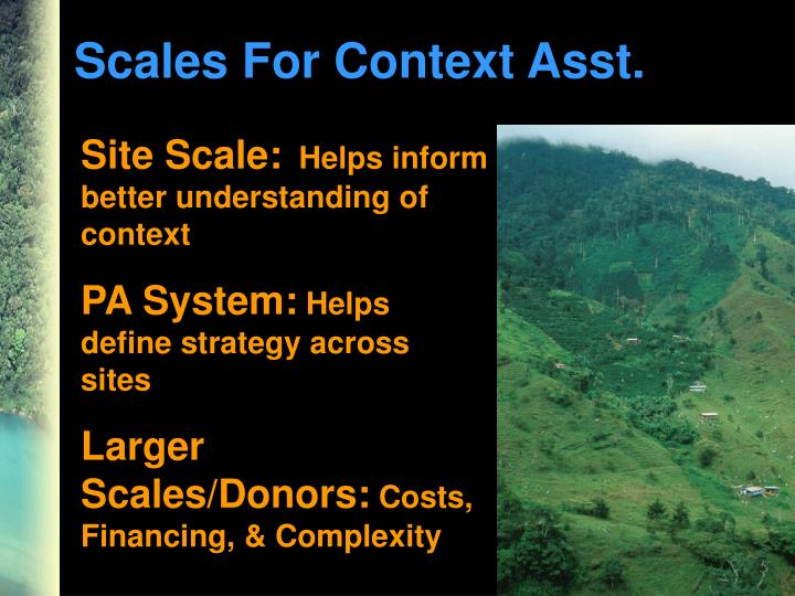 Scales For Context Asst.