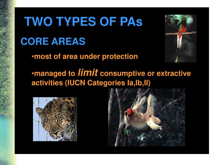 TWO TYPES OF PAs