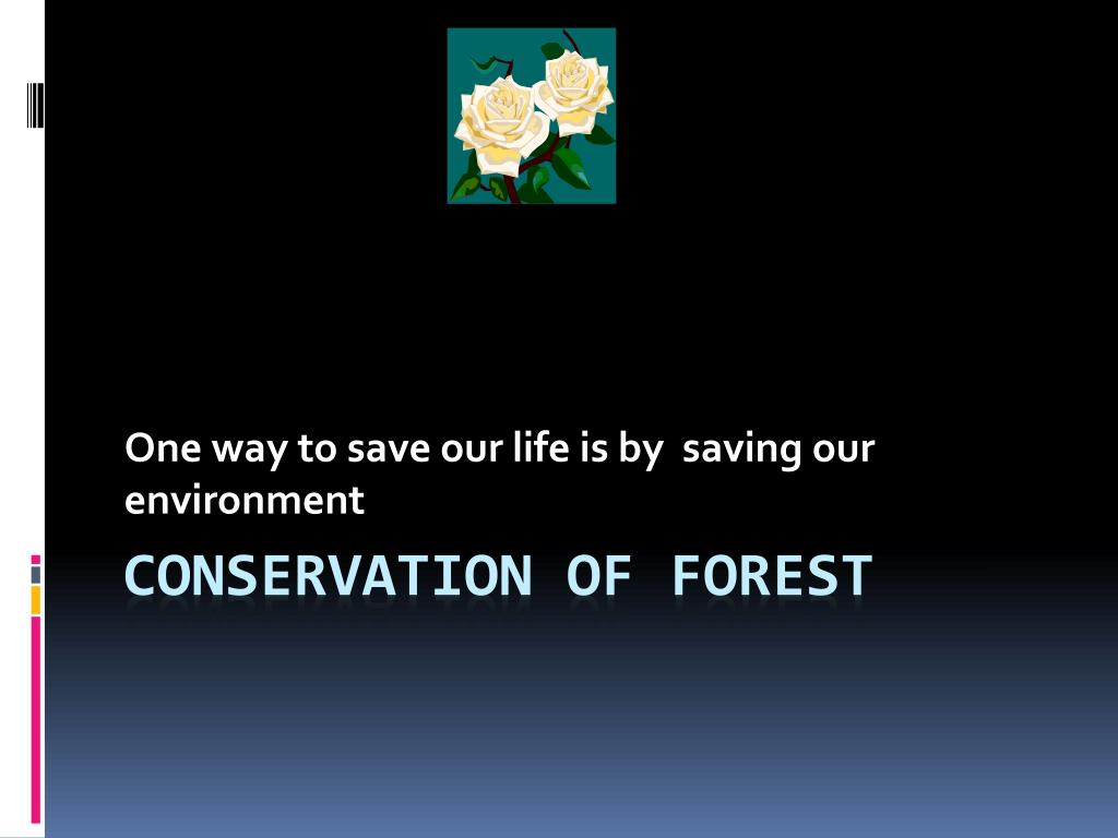 conservation of forest ppt free download