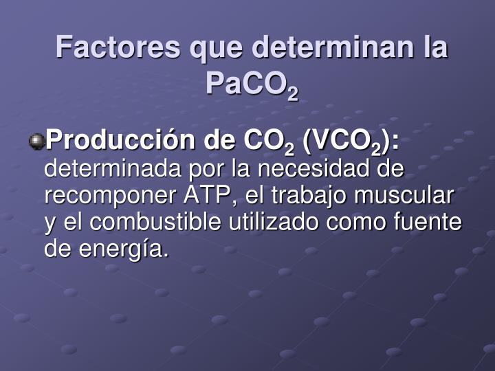 Factores que determinan la PaCO