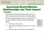 assessing mentor mentee relationships and their impact