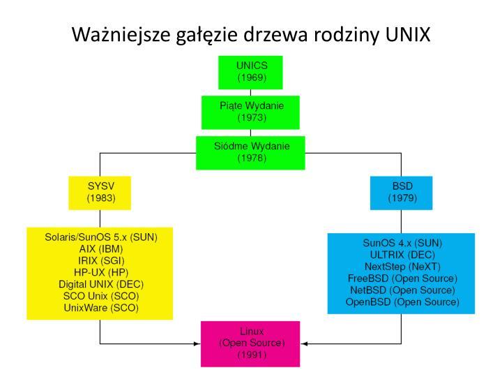 Ważniejsze gałęzie drzewa rodziny UNIX