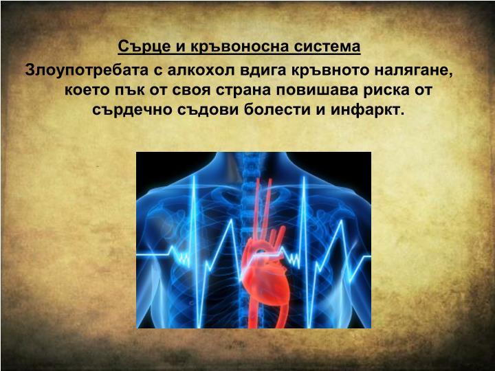 Сърце и кръвоносна система