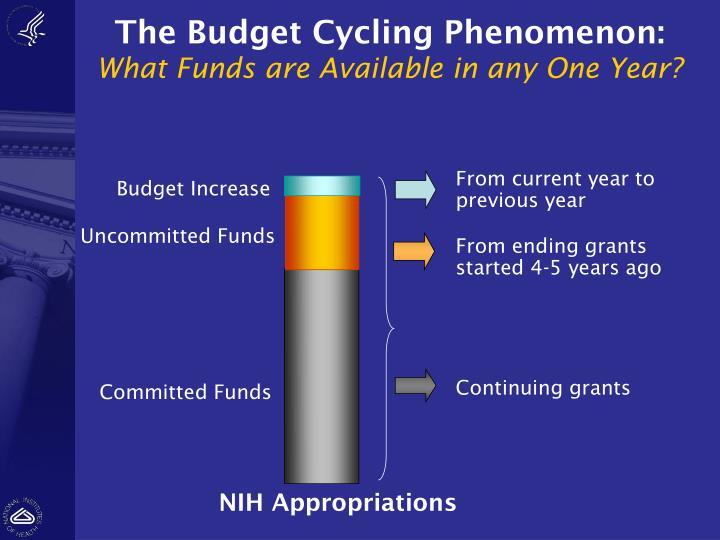 The Budget Cycling Phenomenon: