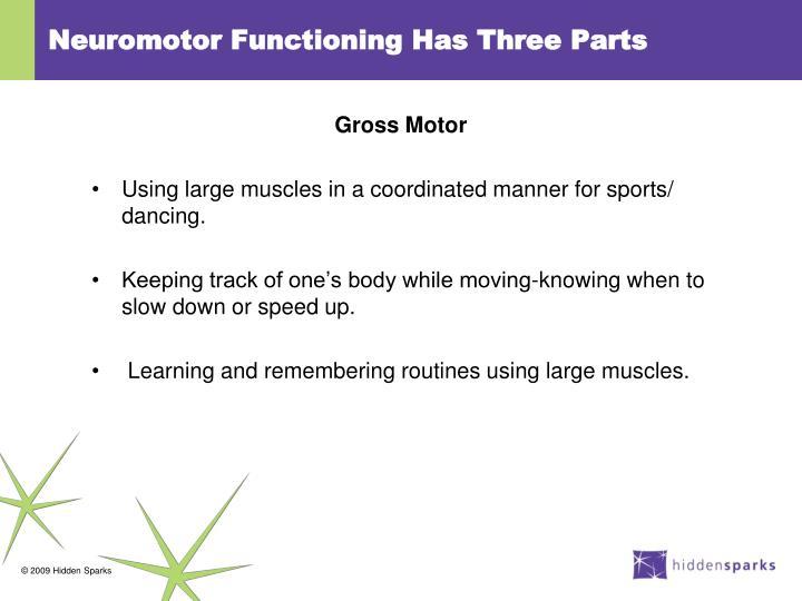 Neuromotor Functioning Has Three Parts