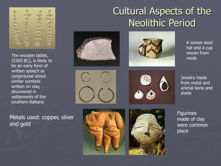 Cultural Aspects of the
