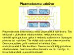 plazmodesmu uzb ve1