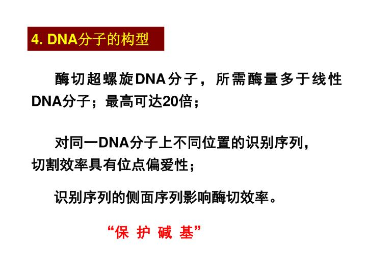 4. DNA